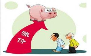 常州猪价连涨9周累计涨幅近25%