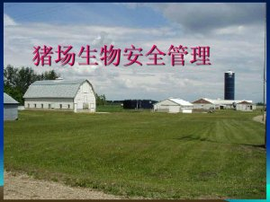 关于中小猪场生物安全