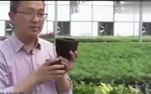 养猪场引进新技术,猪粪都能赚钱了!农民朋友行动起来吧!