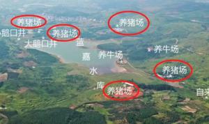 湖南一村村民称水井涌出猪粪水,政府要求猪场提供桶装水就解决问题了?