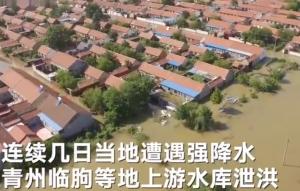 航拍寿光洪灾:整个村子泡在洪水里 蔬菜大棚被淹猪在水里挣扎