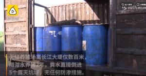 可恶!非法养猪场泔水养猪,猪粪堆成山危及长江生态
