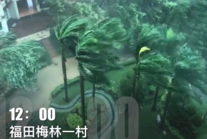 """台风""""山竹""""肆虐!广东深圳珠海等地最大风力已17级"""