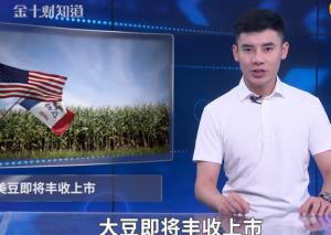美国大豆增产530万吨,却失去中国买家,这两国已成美国替补