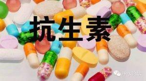 【兽药】科学使用兽药
