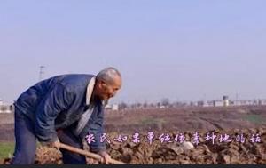 农业补贴明明越来越多,农村人却不愿意继续种地了,原因很现实