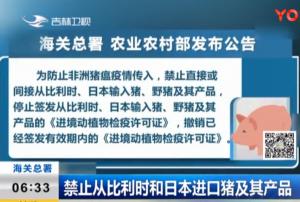 海关总署:禁止从比利时和日本进口猪及其产品!