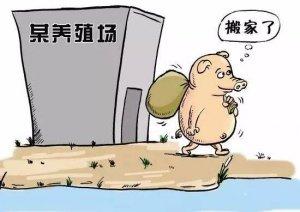 青海循化关闭搬迁31家禁养区养殖场