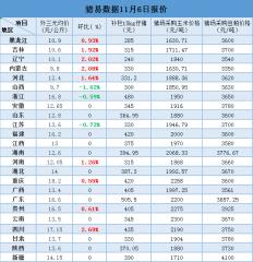11月6日最新生猪、仔猪、玉米、豆粕价格
