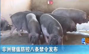 农业农村部:发布非洲猪瘟防控八条禁令!