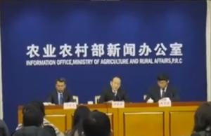 非洲猪瘟影响元旦春节猪肉供应?农业农村部回应!