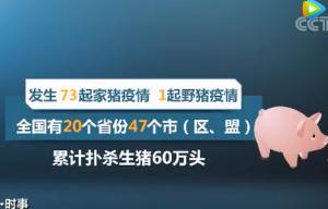 北京猪肉市场的生猪及猪肉,90%靠外地供应!