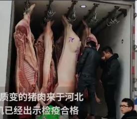 贵州街头现猪瘟肉?专家:只是变质