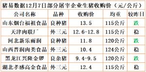 猪易通app12月7日部分企业猪价动态