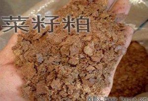 豆粕替代技术系列:育肥猪日粮中菜粕的适宜用量研究