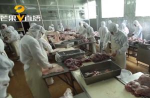 湘潭民营企业1.5亿引进进口设备,从个体猪经纪到打造生猪全产业链