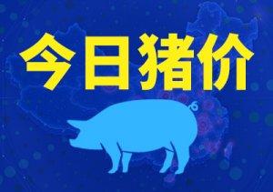 江西执行新政策,广西外调再次被禁,后期猪价变数多!