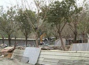 占地14000�O的养猪场被依法拆除!