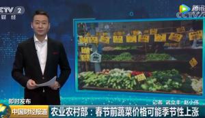 农业农村部:春节前蔬菜价格可能季节性上涨视频
