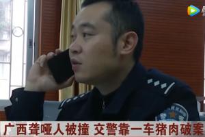 广西聋哑人被撞,交警靠一车猪肉破案