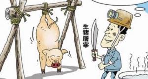 临近年关 供应宽松 屠企将陆续减产停宰!
