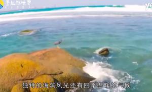 海南对59国免签,为何游客却只减不增?