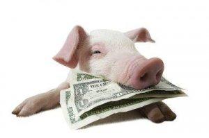非洲猪瘟之后普通养猪人要激流勇退