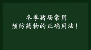 养猪技术:冬季猪场预防猪病有高招!