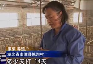 原来为防御猪病,养猪户每隔7天就要打一次疫苗!