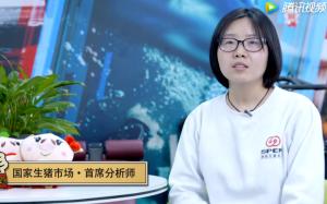 """2019年猪价,能否会""""一飞冲天""""?"""