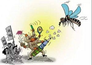 """""""非瘟""""防疫之猪场灭蚊灭蝇―经典实操办法都在这里!"""