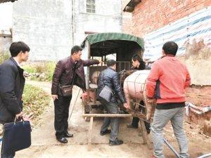 法院强制养户变卖生猪以抵债27万