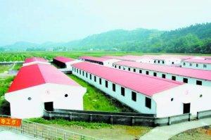 浙江金华市加快畜牧业生态化标准化建设