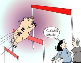猪肉消费淡季,肉价为何一再上涨?