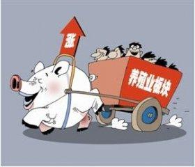 猪企2月业绩公告!非瘟背景下生猪销量竟同比增长30%?