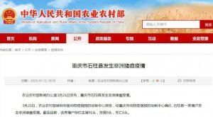 重庆市石柱县发生非洲