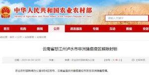云南省怒江州泸水市非洲猪瘟疫区解除封锁