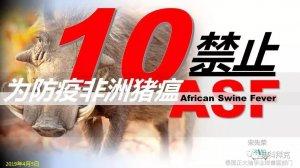 泰国教授分享―猪场防疫非洲猪瘟10禁止