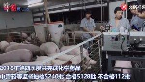 农业农村部:去年第四季度兽药产品合格率97.9%