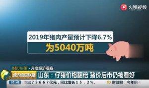山东:仔猪价格翻倍 猪价后市仍被看好
