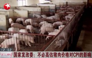 国家发改委:不必高估猪肉价格对CPI的影响