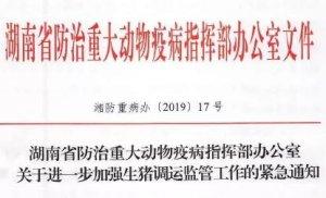 新宁查获10车非法调运猪?湖南鼓励发动群众参与非法调运巡查