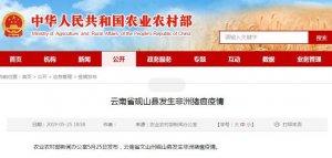 云南省砚山县发生非洲猪瘟疫情