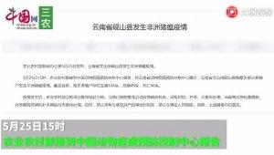 云南省砚山县发生非洲猪瘟疫情 发病49头,死亡48头
