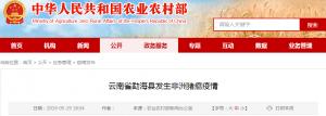 云南省勐海县发生非洲猪瘟疫情