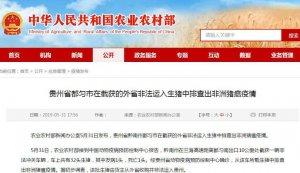 贵州省都匀市在截获的外省非法运入生猪中排查出非洲猪瘟疫情