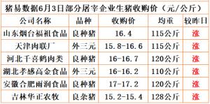 猪易通app19年6月03日部分企业猪价动态
