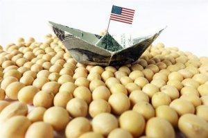 USDA:美国对华大豆出口最新销售总量同比减少53%