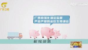 广西:严格落实非洲猪瘟防控重点措施