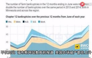 中国买家取消美国猪肉订单,美国498个农场破产,事情有新进展